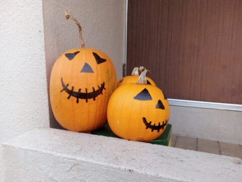 FREETEL SAMURAI 雅(MIYABI)で撮影したかぼちゃ その2