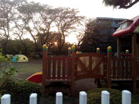 FREETEL SAMURAI 雅(MIYABI)で撮影した逆光の風景