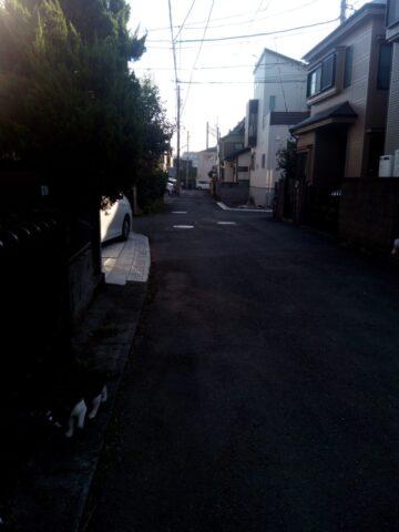 フリーテル(freetel) SAMURAI 雅(MIYABI)の逆光時の露出補正検証 補正あり