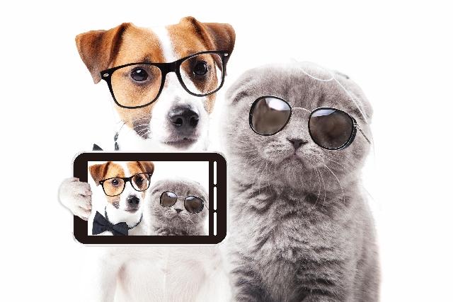 スマートグラス(眼鏡型機器)